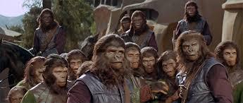 Resultado de imagen para imagenes juicio por jurados simios
